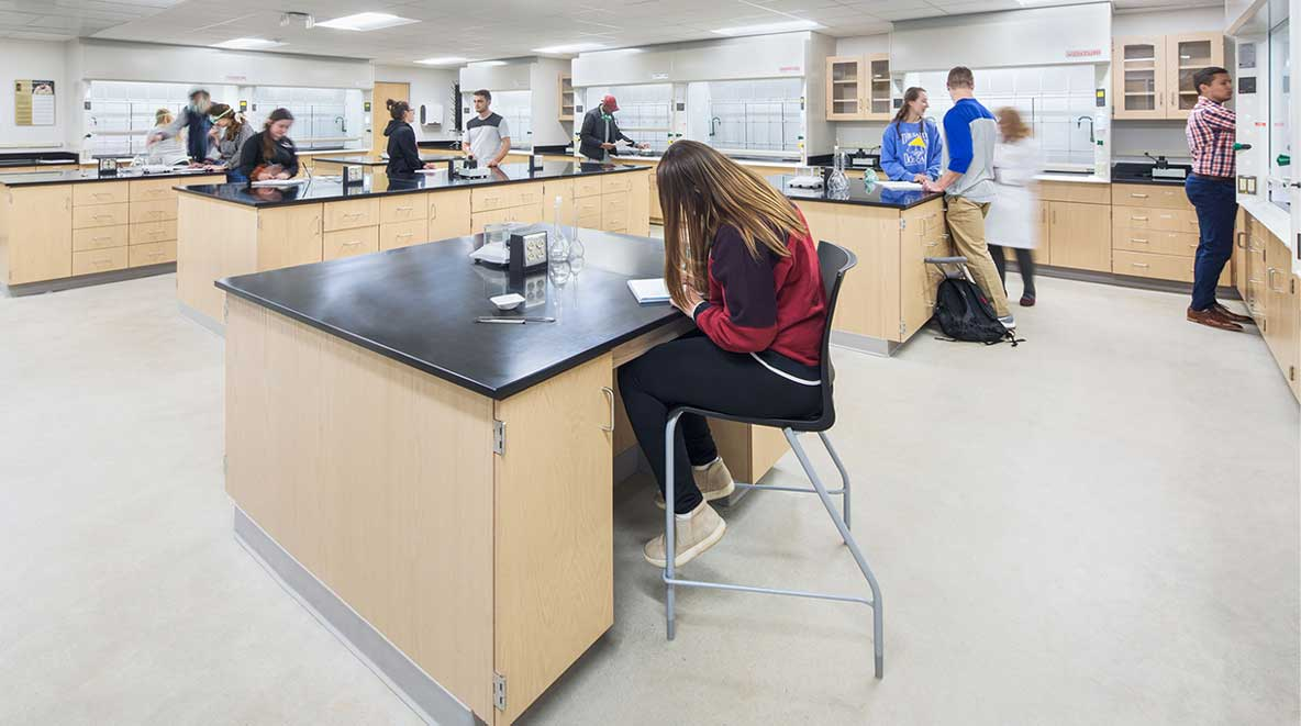Students work at lab tables
